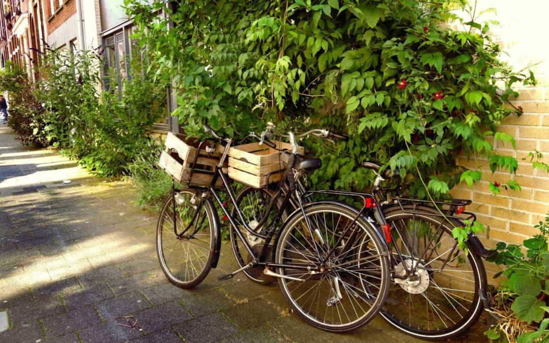 Fahrradstadt Hildesheim!?