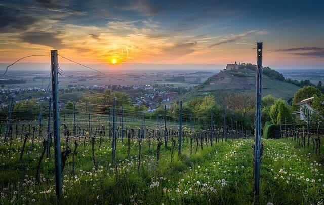 Freiburg Beispielbild 5
