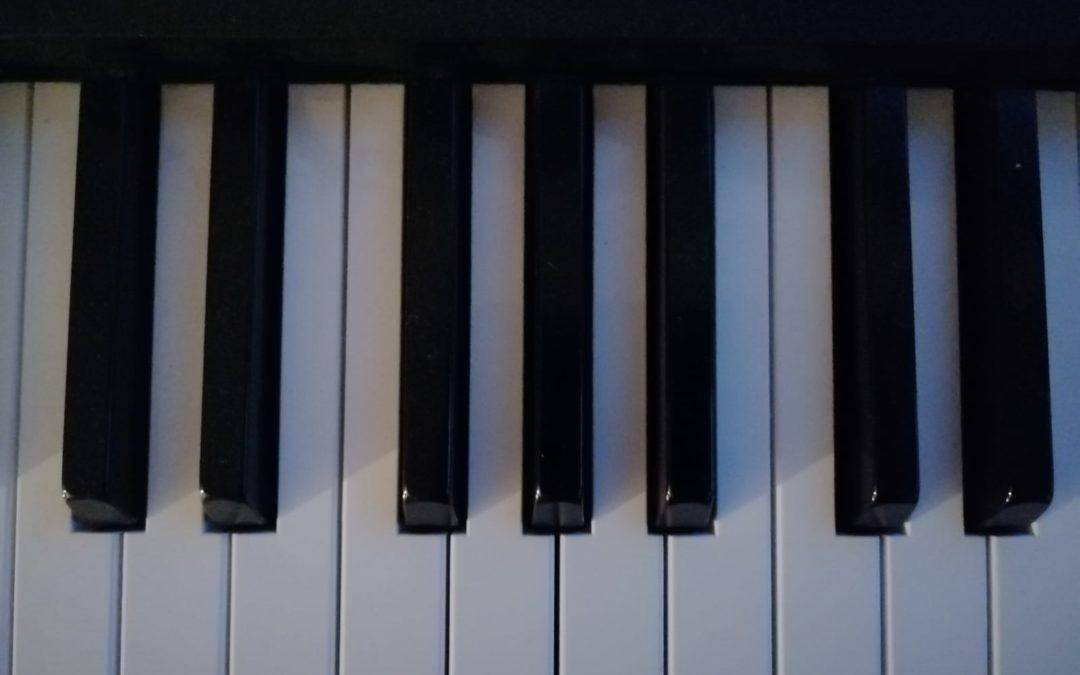 Harmonielehre: Das Seminar des Grauens?