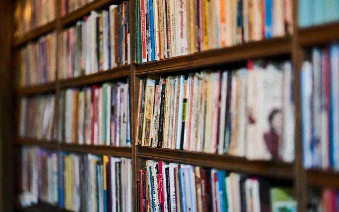 Was lesen eigentlich literaturdozierende?